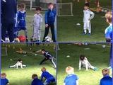 Сын Бетао занимается в футбольной школе «Динамо» (ФОТО)