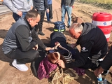 «Олимпик» по дороге на выездной матч с «Львовом» оказал помощь пострадавшим в ДТП (ФОТО)