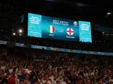 На «Уэмбли» во время финала Евро-2020 может оказаться рой летающих муравьёв