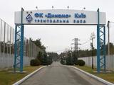 Футболисты «Динамо» сдали тесты на COVID-19. Все игроки здоровы