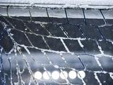 Матч чемпионата Франции отложен из-за снегопада