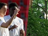 Два фаната смотрели матч «Унион» — «Бавария» с 12-метрового дерева. Полиция заставила их слезть (ФОТО)
