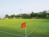 Все клубы украинской Премьер-лиги будут в Турции готовиться ко второй части сезона