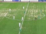 Агент: «Это просто позор — показывать на всю страну такое поле главного стадиона Беларуси»