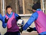 ФОТОрепортаж: тренировка сборной Украины в Конча-Заспе (18 фото)