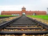 Сборная Италии перед Евро-2012 посетит Освенцим
