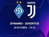 «Динамо» разрешили проводить матчи Лиги чемпионов со зрителями