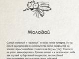 Друзья-комарики