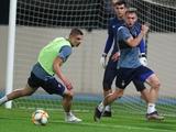 «Динамо» в ОАЭ: теория и практика