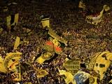 «Боруссия» Д — любимый клуб немецких фанатов, «Бавария» — самый ненавидимый