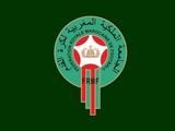 ФФ Марокко официально подала заявку на проведение ЧМ-2026