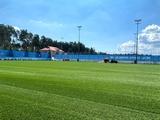 На базе «Динамо» постелили новый газон (ФОТО)