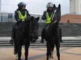 Милиции на матче «Динамо» — «Рапид» будет не больше, чем обычно